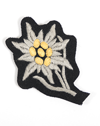 Mountain Troop EM Cap Insignia