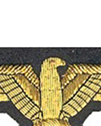 Sepp Dietrich Sleeve Eagle