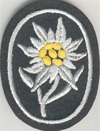 Mountain Troop Sleeve Edelweiss